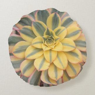 Aeonium 'Sunburst' Succulent Throw Pillow