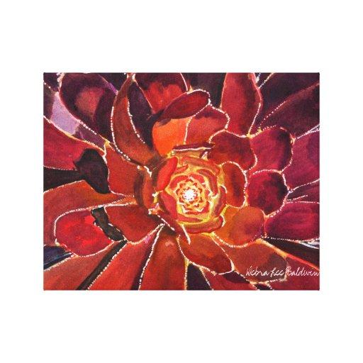 Aeonium 'Zwartkop' Watercolor Canvas Prints
