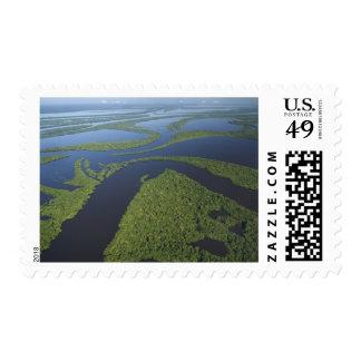 Aerial of Anavilhanas Archipelago, Flooded Postage