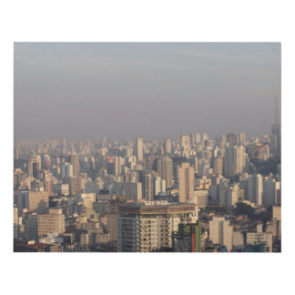 Aerial Panoramic - Sao Paulo Panel Wall Art