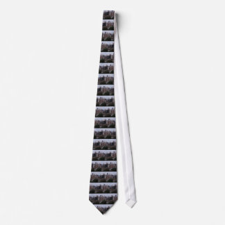 Aerial Pittsburgh Skyline at sunset Tie