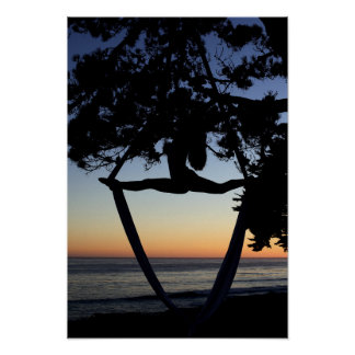 Aerial Silks at Sunset Vertical Poster