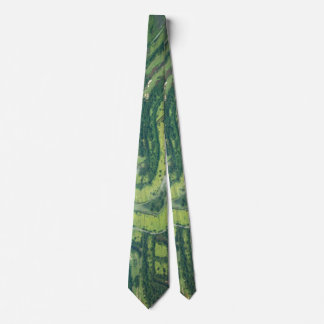 Aerial view - landing approach on Thailand Neck Tie
