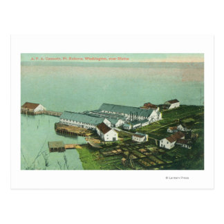 Aerial View of A. P. A. Cannery Postcard