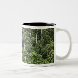 Aerial view of Amazon Rain forest Two-Tone Coffee Mug