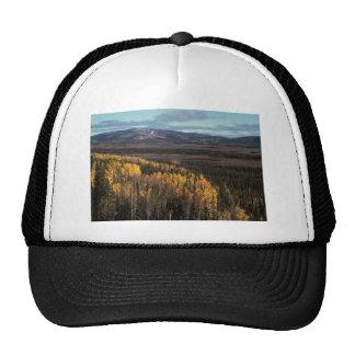 AERIAL VIEW OF AUTUMN LANDSCAPE TRUCKER HAT