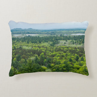 Aerial View of Black River State Forest Accent Pillow