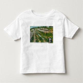 Aerial View of Burbanks Experimental Farm Toddler T-shirt