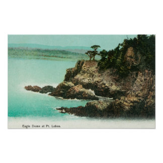 Aerial View of Eagle Dome at Point Lobos Poster