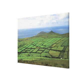aerial view of farmland by the sea canvas prints