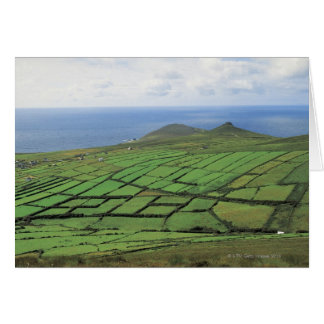 aerial view of farmland by the sea card