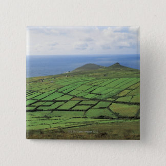aerial view of farmland by the sea pinback button
