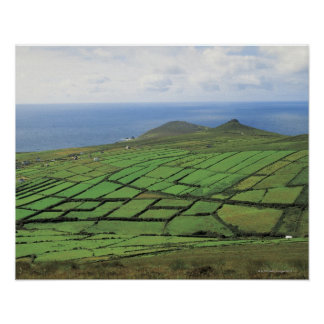aerial view of farmland by the sea print