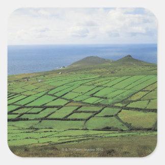aerial view of farmland by the sea square sticker