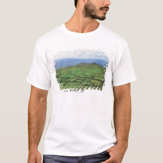 aerial view of farmland by the sea T-Shirt