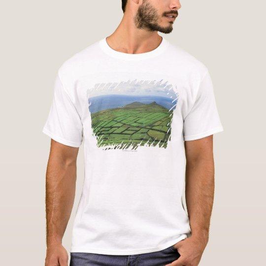 aerial view of farmland by the sea T-Shirt