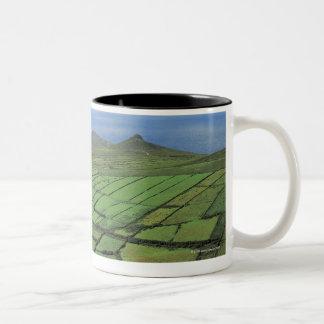 aerial view of farmland by the sea Two-Tone coffee mug