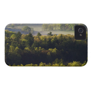 Aerial view of forest in Cades Cove Great Smoky Blackberry Bold Cases