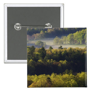 Aerial view of forest in Cades Cove, Great Smoky Pinback Button