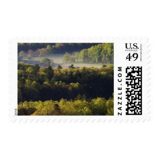 Aerial view of forest in Cades Cove, Great Smoky Postage