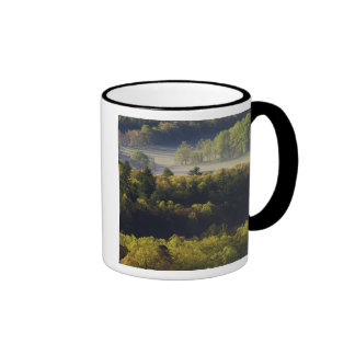 Aerial view of forest in Cades Cove, Great Smoky Ringer Mug