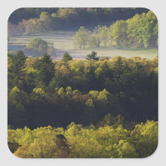 Aerial view of forest in Cades Cove, Great Smoky Square Sticker