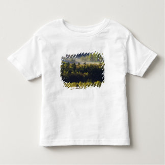Aerial view of forest in Cades Cove, Great Smoky Toddler T-shirt