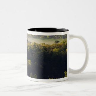 Aerial view of forest in Cades Cove, Great Smoky Two-Tone Coffee Mug