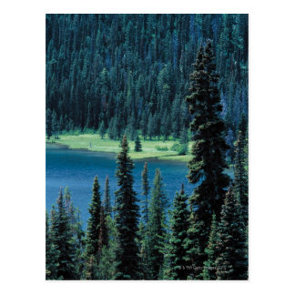 Aerial view of Grand Teton National Park , Postcard