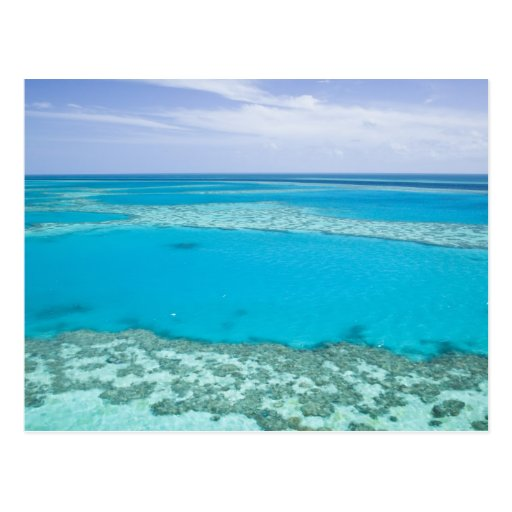 Aerial view of Great Barrier Reef by Post Cards