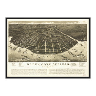Aerial View of Green Cove Springs, Florida (1885) Canvas Print