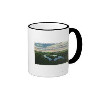 Aerial View of Lake Placid Coffee Mugs