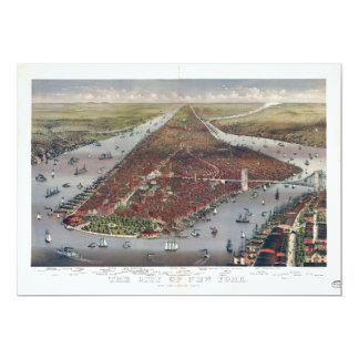 Aerial View of New York City (1884) Card