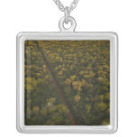 Aerial View of rainforest. Iwokrama Reserve, 2 Square Pendant Necklace