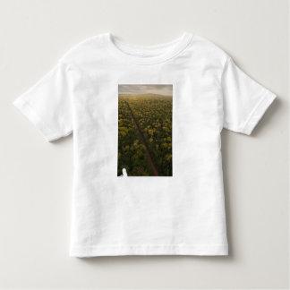 Aerial View of rainforest. Iwokrama Reserve, 2 Toddler T-shirt