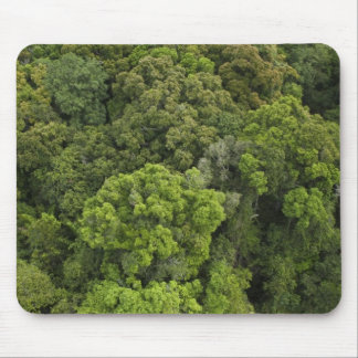 Aerial View of rainforest. Iwokrama Reserve, Mouse Pad