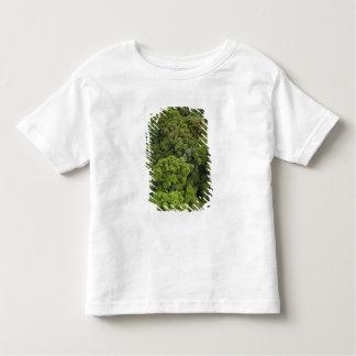 Aerial View of rainforest. Iwokrama Reserve, Toddler T-shirt