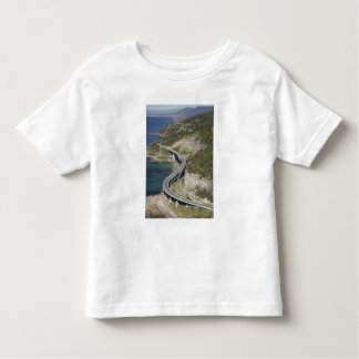 Aerial view of Sea Cliff Bridge near Wollongong, Toddler T-shirt