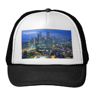 aerial  view  of singapore  angie trucker hat