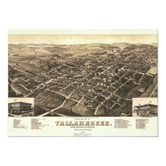 Aerial View of Tallahassee, Florida (1885) Card