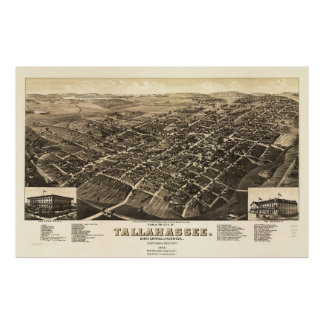 Aerial View of Tallahassee, Florida (1885) Poster