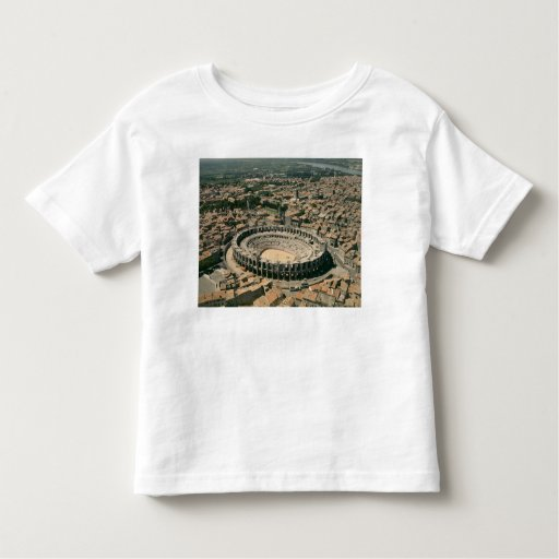 Aerial view of the amphitheatre toddler t-shirt
