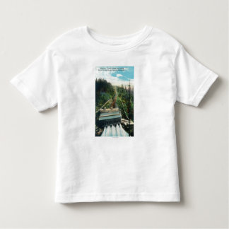 Aerial View of the Electron Power Station Toddler T-shirt