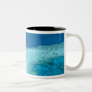 Aerial view of The Great Barrier Reef by the Mug
