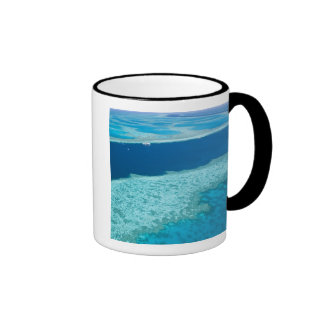 Aerial view of The Great Barrier Reef by the Coffee Mug