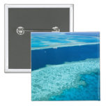 Aerial view of The Great Barrier Reef by the Pinback Button