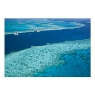Aerial view of The Great Barrier Reef by the Print