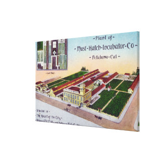 Aerial View of the Must-Hatch Incubator Co Bldg Canvas Print