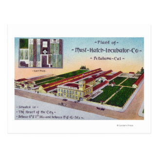 Aerial View of the Must-Hatch Incubator Co Bldg Postcard