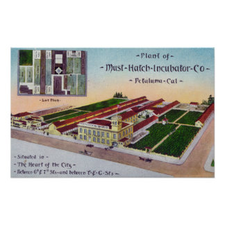 Aerial View of the Must-Hatch Incubator Co Bldg Poster